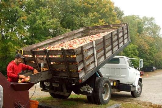 Автомобільна загадка: Скільки яблук може перевезти вантажівка