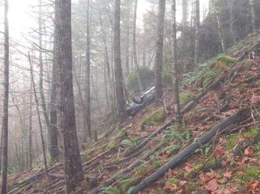 Викрадений 27 років тому Порше виявили в лісі
