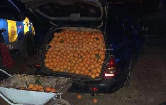 Скільки апельсинів можна вкрасти за допомогою автомобіля?